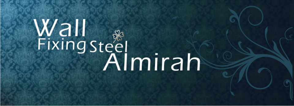 Wall Fixing Steel Almirah